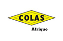 Mecenes_0008_Logo Colas Afrique